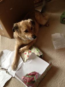 Christmas Sookie